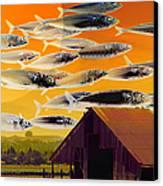 The Fish Farm 5d24404 Long Canvas Print