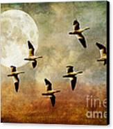 The Flight Of The Snow Geese Canvas Print