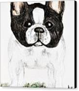 The Frenchton Canvas Print by Maria Urso