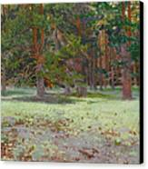 The Glade Covered With A Moss Canvas Print by Victoria Kharchenko