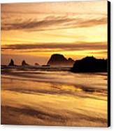 The Golden Coast Canvas Print by Darren  White
