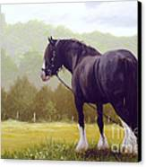 The Grass Is Greener  Canvas Print by John Silver