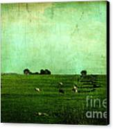 The Green Yonder Canvas Print by Trish Mistric