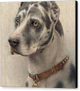The Head Of A Doberman Canvas Print