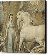 The Horse Canvas Print by William Blake