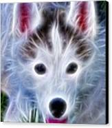 The Huskie Pup Canvas Print by Bill Cannon