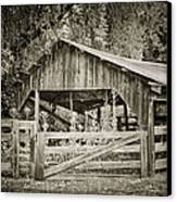 The Last Barn Canvas Print