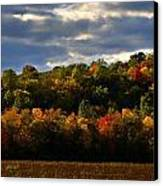 The Layers Of Autumn Canvas Print