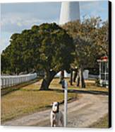 The Lighthouse Guardian Canvas Print by Steven Ainsworth