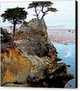 The Lone Cypress - Pebble Beach Canvas Print by Glenn McCarthy Art and Photography