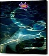 The Magical Pond Canvas Print by Gun Legler