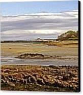 The Maine Coast Canvas Print by Skip Willits