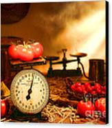 The Old Tomato Farm Stand Canvas Print by Olivier Le Queinec