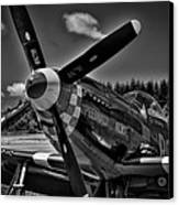 The P-51 Speedball Alice Mustang Canvas Print by David Patterson