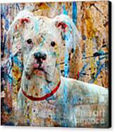 The Painter's Dog Canvas Print
