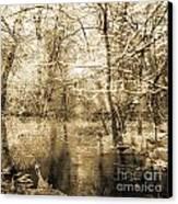 The Pond Canvas Print by Yanni Theodorou