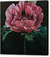 The Poppy Canvas Print