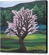 The Promise Of The Almond Tree Canvas Print by Cassandra Donnelly