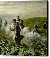 The Pumpkin Harvest Canvas Print by Giovanni Segantini