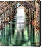 The Quiet Of Green Canvas Print by JC Findley