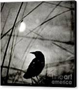 The Raven And The Orb Canvas Print by Sharon Coty