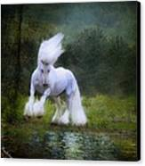 The Reflection Canvas Print by Fran J Scott