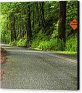 The Road Ahead Canvas Print by Andrew Soundarajan