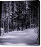 The Road Less Traveled Canvas Print by Paul Herrmann