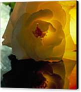 The Shadow Of A Rose Canvas Print by Etti PALITZ
