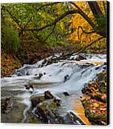 The Still River Canvas Print by Bill Wakeley