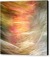 The Subconscious Canvas Print by Munir Alawi