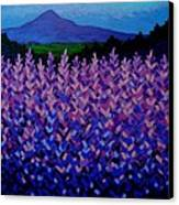 The Sugar Loaf - Wicklow - Ireland Canvas Print by John  Nolan