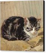 The Tabby Canvas Print by Henriette Ronner-Knip