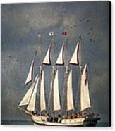 The Tall Ship Windy Canvas Print
