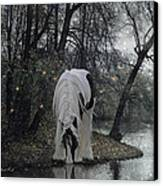 The Thirst Canvas Print by Terry Kirkland Cook