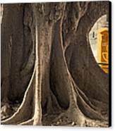 The Tree And The Post Box Canvas Print