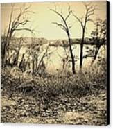 The Trees Of Steamboat Rock Canvas Print by Garren Zanker
