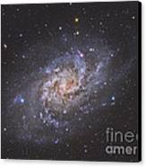 The Triangulum Galaxy Canvas Print by Reinhold Wittich