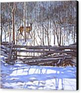 The Watcher In The Wood Canvas Print by Richard De Wolfe