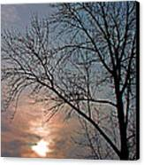 The Winter Skies Canvas Print by Rhonda Humphreys