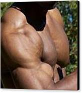 The Wonder Of Biceps Canvas Print
