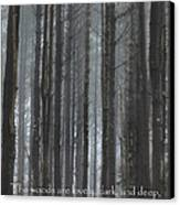 The Woods Canvas Print by Bill Wakeley