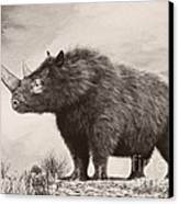 The Woolly Rhinoceros Is An Extinct Canvas Print by Philip Brownlow