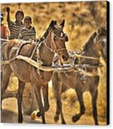 This Is Namibia No. 23 - Going To Town The Old Fashioned Way Canvas Print by Paul W Sharpe Aka Wizard of Wonders