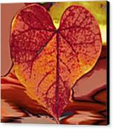This One Is For Love Canvas Print by Linda Sannuti