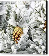 Three Frosty Cones Canvas Print by Marilyn Hunt