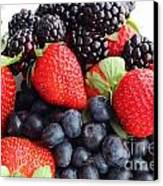 Three Fruit Closeup - Strawberries - Blueberries - Blackberries Canvas Print by Barbara Griffin