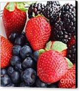 Three Fruit - Strawberries - Blueberries - Blackberries Canvas Print by Barbara Griffin