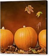 Three Pumpkins Canvas Print