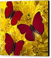 Three Red Butterflys Canvas Print by Garry Gay